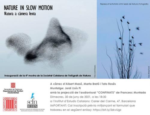 Exposició Nature in slow motion. Societat Catalana de Fotogràfs de Natura